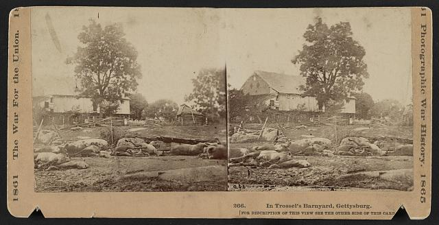 Stereoview of 65 dead horses from the 9th Massachusetts Battery of Light Artillery lying in Abraham Trostel's barnyard at Gettysburg, photographed by Timothy O'Sullivan, July 1863