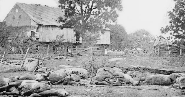 Battle of Gettysburg, dead horses on Trostle Farm after the battle, circa July 1863