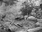 "Battle of Gettybsurg, dead Confederates soldiers in the ""slaughter pen"", circa 1863"