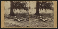 Battle of Gettysburg, dead Confederate soldiers, photographed by Timothy O\'Sullivan circa July 1863
