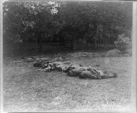 Battle of Gettysburg, dead Confederate soldiers near the center of the battlefield, circa July 1863