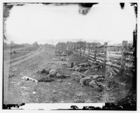 Confederate dead by a fence on the Hagerstown road after the Battle of Antietam, photographed by Alexander Gardner, in Sept 1862