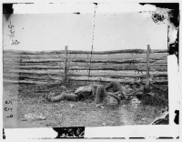 Dead Confederate soldiers from Stonewall Jackson's Brigade by rail fence on the Hagerstown pike after the battle of Antietam, photographed by Alexander Gardner, circa Sept 1862