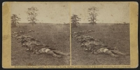 Dead soldiers gathered together for burial after the Battle of Antietam, photographed by Alexander Gardner, circa 1862