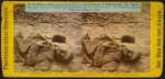 Stereoview of dead soldier at Petersburg 